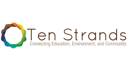 Ten Strands Logo